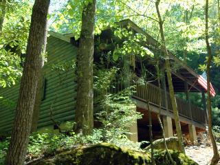 Riverfront Log Cabin - Private Waterfall and Scenic Nature Views - Millers Creek vacation rentals
