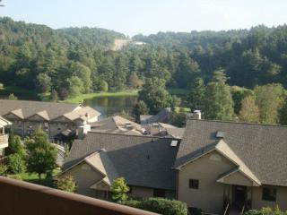Chetola: Wren 301 Location: Blowing Rock - Boone vacation rentals