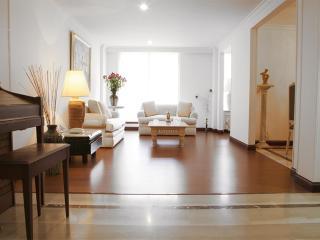 Classic 3 Bedroom Apartment in Santa Barbara - Bogota vacation rentals