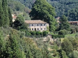 Spacious 5 bedroom Villa in Migliano - Migliano vacation rentals