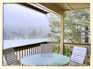 Mt. Hood Resort Condos #647 - Welches vacation rentals