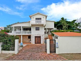 Gorgeous spacious Villa Cas Grandi, 10-15 persons - Willemstad vacation rentals
