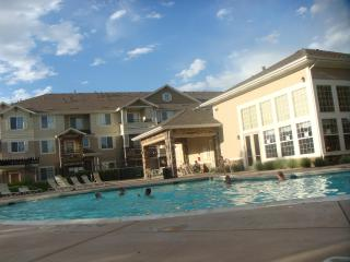 Cozy-2 Bedroom/2 bathroom-whole apt - Denver vacation rentals