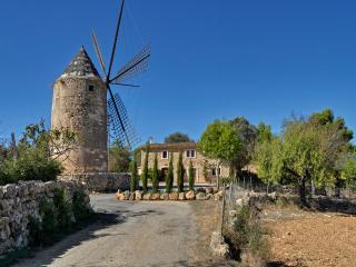 Es Moli Son Maiol - El Toro vacation rentals