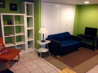 ***Convenient Furnished 1 Bedroom Apartment in Downtown Jersey City*** - Jersey City vacation rentals