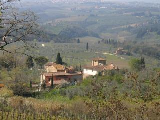 romantic cottage in the heart of Chianti Florence - San Casciano in Val di Pesa vacation rentals