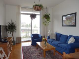 4490 Market Commons Dr VA 22033 Furnished 1-6 mos - Fairfax vacation rentals