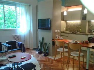 Modern Loft por 2 people in Palermo Botánico - Buenos Aires vacation rentals