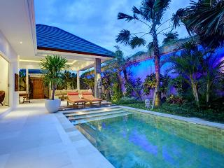 Wonderfull Villa 1 Br - Piscine Privee -Bali -Seminyak - Seminyak vacation rentals
