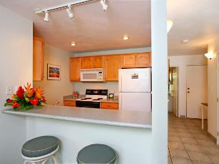 Beautiful Renovated Condo - Mountain Views - 30 Yards to Ocean - Kihei vacation rentals