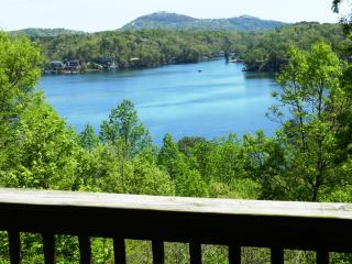 Cozy Log Cabin, Views of Lake Lure & Mountains - Lake Lure vacation rentals