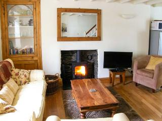 TY GWYN close to beach, open plan living, pet-friendly in Aberdovey Ref 30784 - Aberdovey vacation rentals