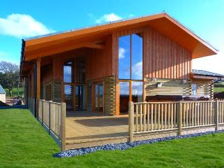 AURAE, quality lodge with hot tub, saunda, views, open plan accommodation, Cawdor, Inverness Ref 904499 - Dalcross vacation rentals