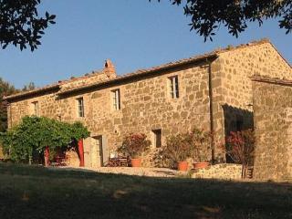 Villa Montecucco - Castelnuovo dell'Abate vacation rentals