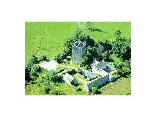15th Century Castle - County Laois vacation rentals