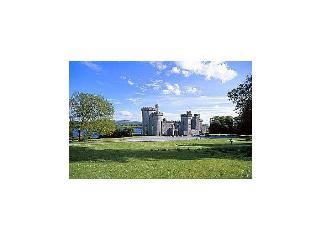 Gothic Castle Estate - Gort vacation rentals