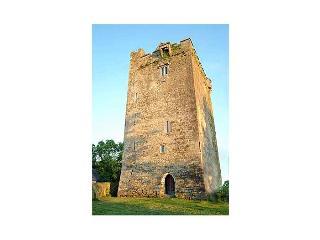 britain-ireland/ireland/towerhouse-castle - Kilkenny vacation rentals