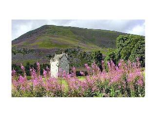 britain-ireland/scotland/the-fortalice - Moffat vacation rentals