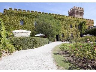Castle Mago - Castagneto Carducci vacation rentals