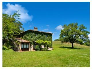 Villa D' Elsa - Casole D'elsa vacation rentals