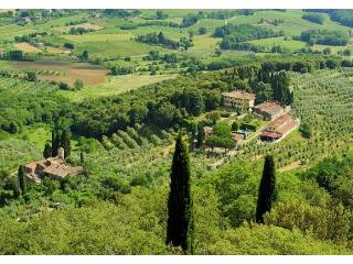 Villa Soldani Estate - Bucine vacation rentals