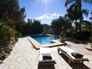 Villa Castellans - Pego vacation rentals
