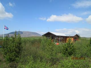 Nice House with Television and DVD Player - Selfoss vacation rentals