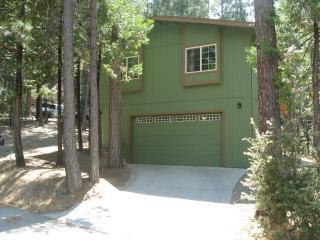 Bass Lake Cabin/Near Yosemite National Park. - Bass Lake vacation rentals