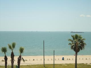 **Charming Beach Condo #3226, Fun Escape** - Corpus Christi vacation rentals