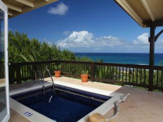 Tropical Oasis East Coast Barbados Retreat - Bathsheba vacation rentals