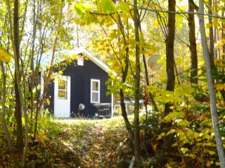 Private Cottage House w/ Secluded Walking Paths - Northeast Kingdom vacation rentals