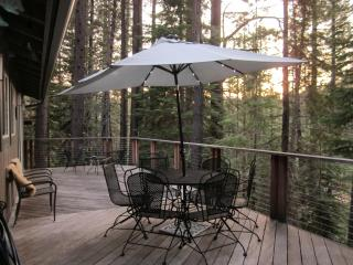 Close but far enough away for Relaxation & Privacy! Off Pioneer Trail, South Lake Tahoe, Ca 96150 - South Lake Tahoe vacation rentals