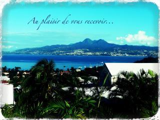 La case de Mathurin, Beau T1, vue mer... - Trois-Ilets vacation rentals