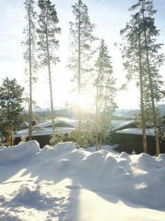 Mountain retreat - Silverthorne vacation rentals