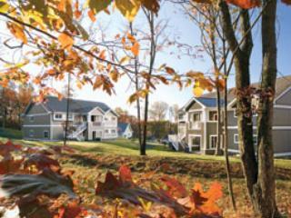 WYNDHAM SHAWNEE VILLAGE - POCONOS WYN SHAWNEE VILLAGE - SKI, POOLS, HOT TUB - Shawnee on Delaware - rentals