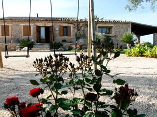 charming house with private pool - Porto Cristo vacation rentals