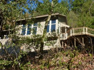 New Trinity River Village Home - Willow Creek vacation rentals