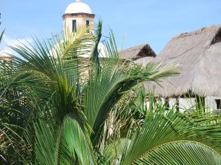 Private Luxury Villa 9 bed-9 bath Free snorkeling - Playa del Carmen vacation rentals