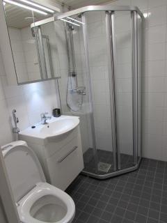 Nice Furnished Apartment in Espoo - Espoo vacation rentals