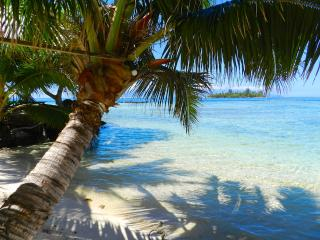 Lagoon beach 6 pax villa by ENJOY VILLAS - Tahiti vacation rentals
