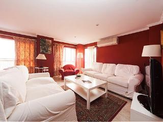 Moratin 4 - Seville vacation rentals