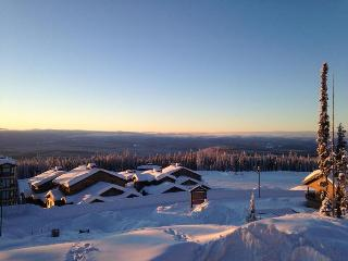 Comfortable Condo with Dishwasher and DVD Player - Big White vacation rentals
