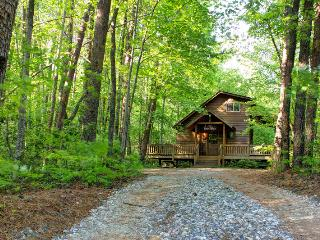 The Bear Affair - Private & Secluded  - Wifi provi - North Georgia Mountains vacation rentals