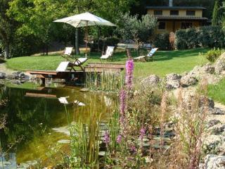 Charme and comfort in Sabina-shire LA FARFALLETTA - Castelnuovo di Farfa vacation rentals