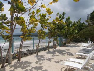 Tropical Escape @ The Palms of Richmond - Ocho Rios vacation rentals
