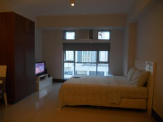 Walking Distance From Greenbelt - Makati vacation rentals