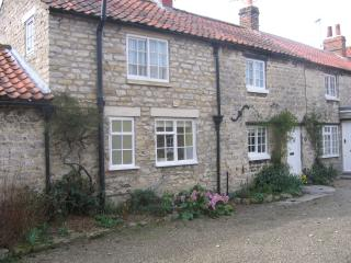 Pickering: Vivers Mill cottage - Pickering vacation rentals
