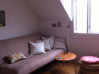 Lovely small Copenhagen apartment at Frederiksberg - Copenhagen vacation rentals
