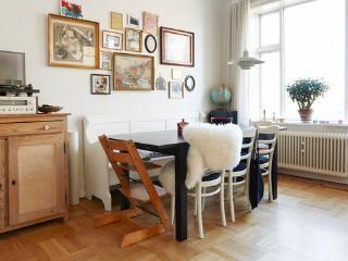 Very cozy Copenhagen apartment at Noerrebro - Copenhagen vacation rentals