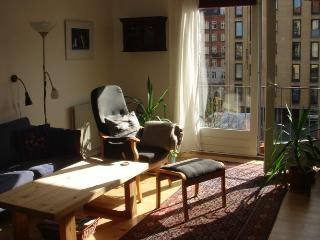 Copenhagen apartment with fantastic view of the canal - Copenhagen vacation rentals